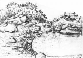 Пруды и озера 4